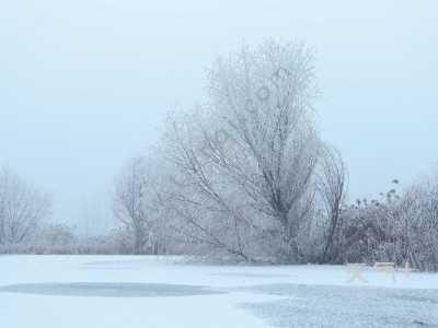 优美古诗 关于雪的优美诗句