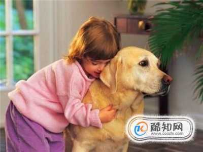 过敏的症状及反应 对狗过敏的主要症状及应对措施